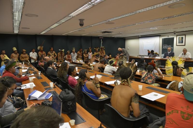 Comissão de Legislação Participativa da Câmara dos Deputados, realiza audiência pública sobre suspensão da demarcação das terras indígenas do Paraná