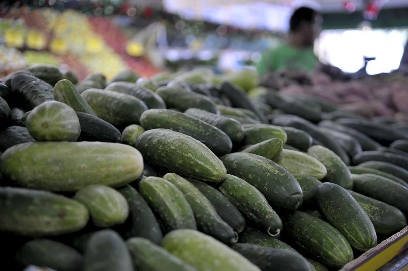 Pepino aparece em terceiro lugar no ranking dos alimentos com maior número de amostras contaminadas por agrotóxicos. Foto de Ranato Araújo/ABr