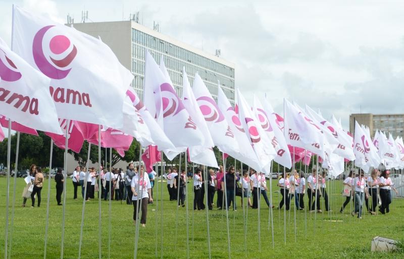 Pacientes que superaram o câncer de mama fazem manifestação em Brasília, em novembro de 2013, marcando o Dia Nacional do Combate ao Câncer. Foto: Antonio Cruz/Agência Brasil
