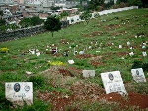 Cemitérios têm problemas ambientais e sanitários