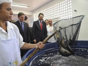 Plano Safra do Peixe