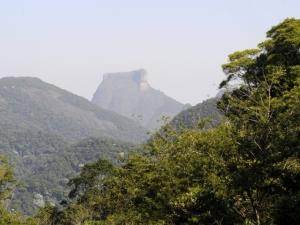 Educação ambiental é ensinada em cidades do Rio de Janeiro