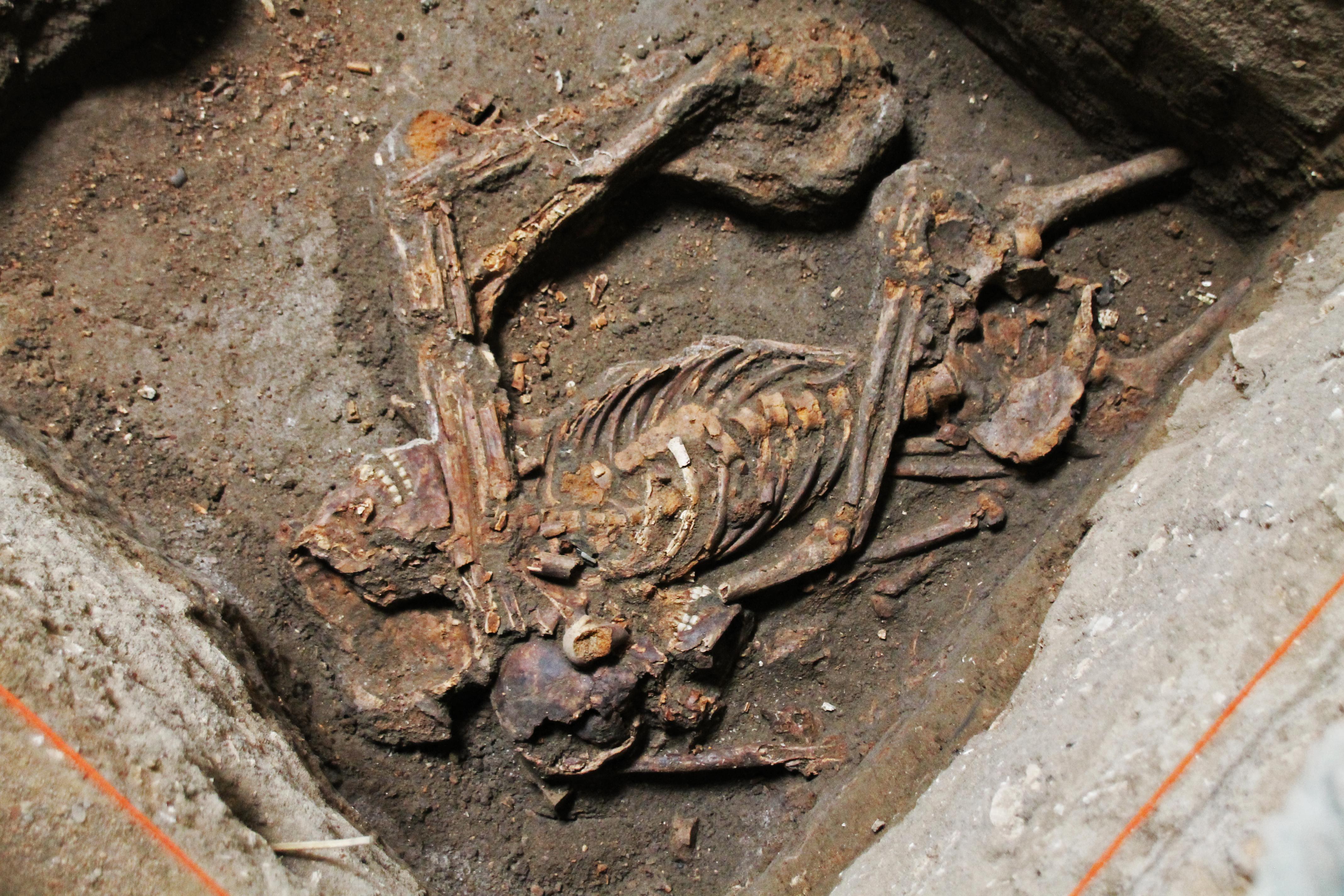 O ossada encontrada é de uma mulher e recebeu o nome de Josefina Bakhita, em homenagem à primeira santa africana da Igreja Católica. Arqueólogos estimam que ela morreu com aproximadamente 20 anos, no início do século 19