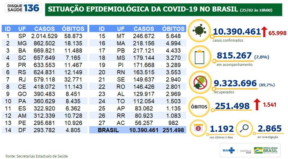 Situação epidemiológica da covid-19 no Brasil - Divulgação/Ministério da Saúde.